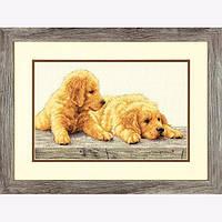 """70-35309 • Набор для вышивания крестом """"Щенки золотистого ретривера//Golden Retriever Puppies"""" DIMENSIONS"""