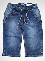 Джинсовые шорты для мальчиков Goloxy оптом,134-164 pp.