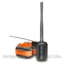100 % ОРИГИНАЛ Dogtra Pathfinder — электронный ошейник c GPS, компасом - Интернет-магазин «GoodLife» в Киеве