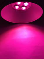 Светодиодный фитосветильник купольный  Highbay SL-200/FS 200W IP65 Код.58818