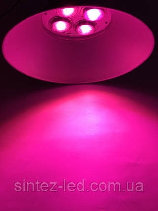 Светильник для растений купольный Highbay SL-200/FS 200W IP65 Код.58818, фото 2