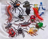 Комахи та рептилії в тубусі, фото 1