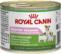 Royal Canin Starter Mousse - Для щенков с момента отъема до 2 месяцев