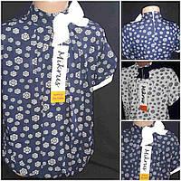 Стильная детская блуза в школу с короткими рукавчиками, рост 122-146 см., 185