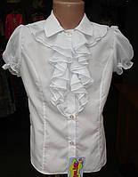 Блузка школьная для девочки с жабо.