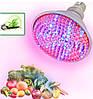 Как правильно выбрать тип освещения для быстрого роста растений? Преимущества светодиодных фитоламп (фитосветильников, фитопанелей, фитопрожекторов) для выращивания растений.