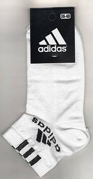 Носки женские спортивные х/б с сеткой Adidas, Athletic Sports, короткие, белые, 06007