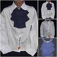 Элегантная блуза школьная, поплин, Польша, рост 116-146 см., 185