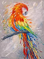 «Попугай» картина маслом