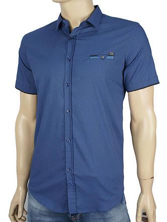 Чоловіча сорочка Еnisse EGK1343-KZ1529V4 синього кольору, фото 2
