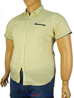 Чоловіча сорочка Еnisse EGK51343-KZ1292V20 великих розмірів