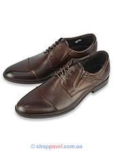 Туфлі чоловічі шкіряні Tapi A-5359 коричневого кольору