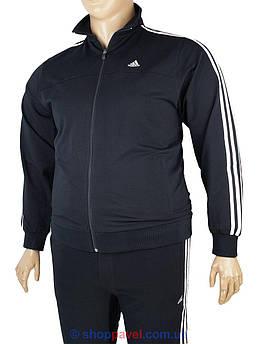 Чоловічий спортивний костюм в стилі A 590212 D.Blue великих розмірів
