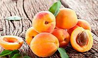 Импортные абрикосы и персики падают в цене