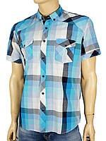 Чоловіча бавовняна сорочка Negredo 0295 в крупну клітку