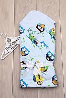 Конверт-одеяло на выписку для новорожденных голубой, Совенок