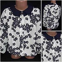 Элегантная блуза школьная, Польша, рост 122-146 см., 185