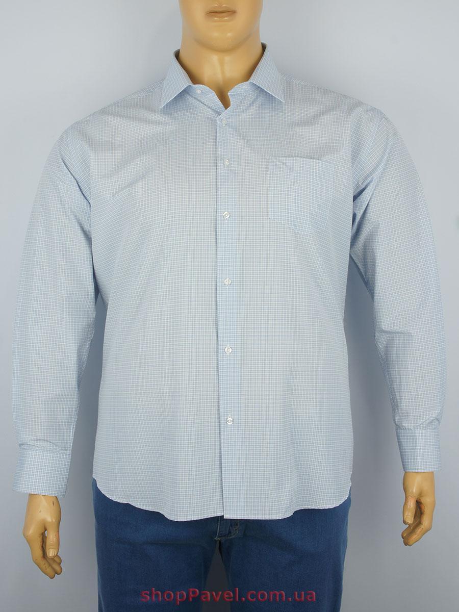 Чоловіча сорочка Betibo Classic 0330 B великих розмірів