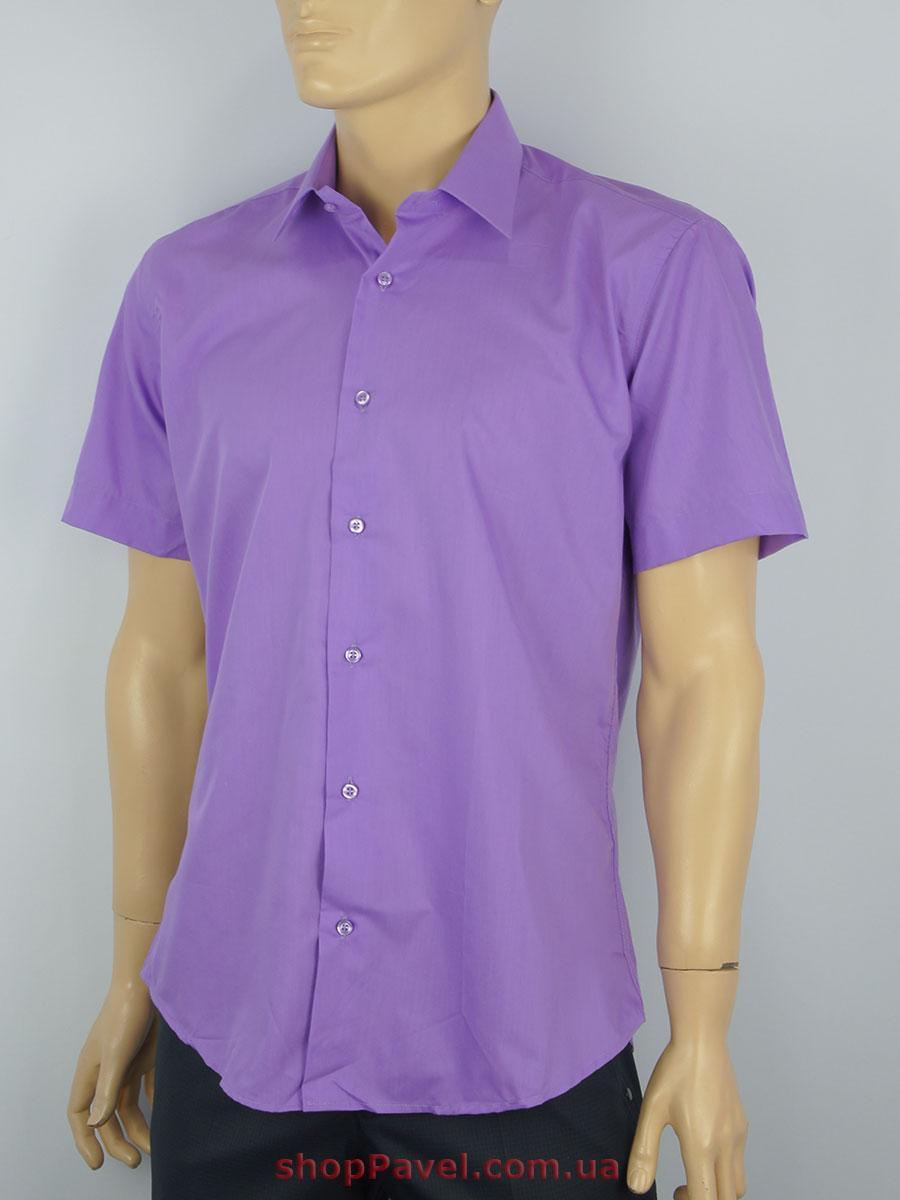 Чоловіча сорочка Negredo 31072 Slim  бузкового кольору