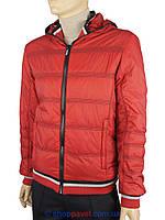 Чоловіча демісезонна червона куртка Malidinu 13611/8