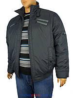 Зимова чоловіча коротка куртка Santoryo WK 5029 B