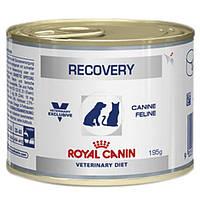 Royal Canin Recovery 195g восстановительный период после болезни