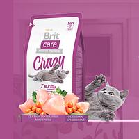 Brit Care CRAZY KITTEN Сухой корм для котят от 1 до 12 месяцев 2 кг