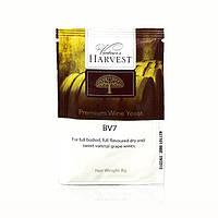 Дрожжи для белых вин Vinter's Harvest BV7 (Н.Зеландия)