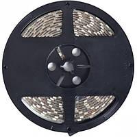 LED лента герметичная 35*28, 60/4. 8w, белый холодный