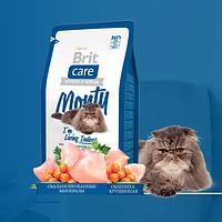 Brit Care MONTY Indoor Сухой корм для взрослых кошек не покидающих помещение 0.4 кг