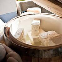 Козий сыр – йогурт и антибиотик