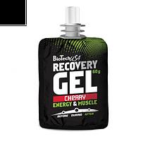 Recovery Gel BioTech 60 g