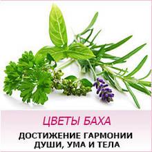 Цветы Баха (Украина)