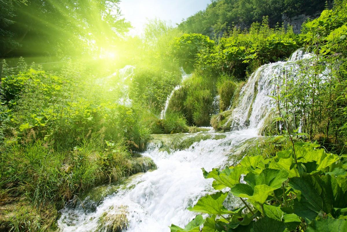Фотообои Горный ручей