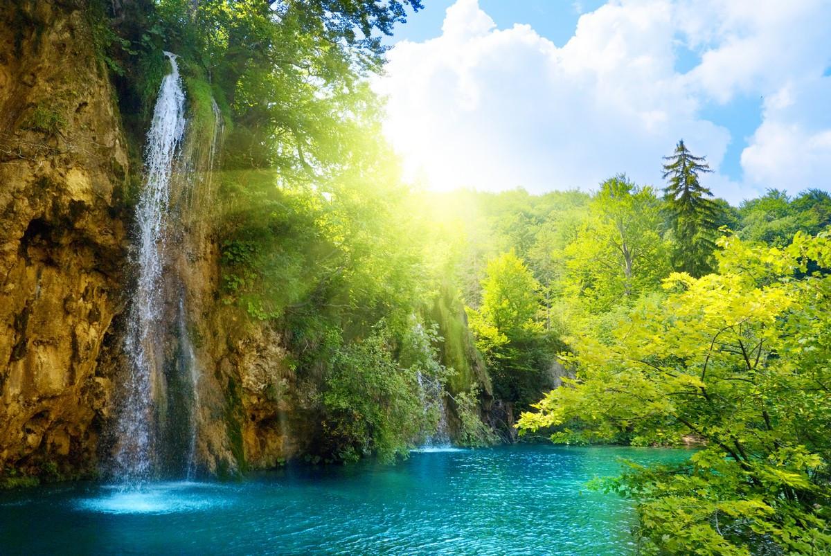 Фотообои: Водопад в лесу
