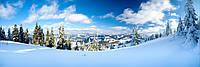 Фотообои Зимняя панорама