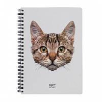 Sketchbook Geometrical - Cat (160л) Скетчбук Кот на пружине