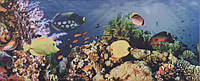 15898 | Yalta 1 Sea - Плитка облицовочная 200x500