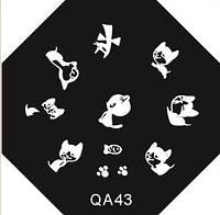 Диск для стемпинга  QA №43