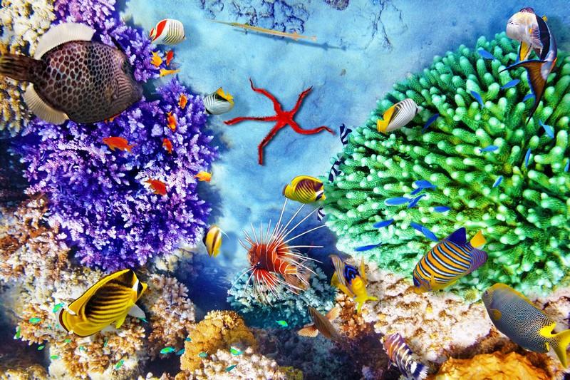 Фотообои Зеленые кораллы