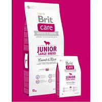 Brit Care Junior Large Breed Lamb & Rice Корм для щенков крупных пород с ягненком и рисом 12 кг