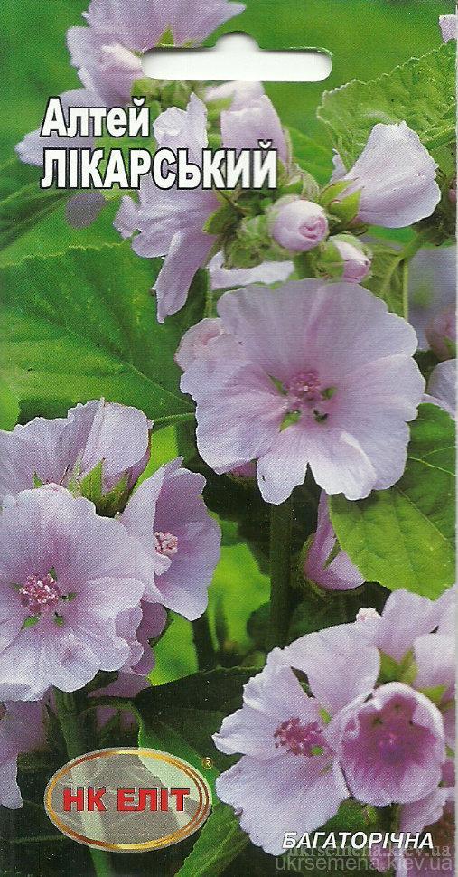 Лекарственное растение Алтей