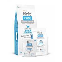 Brit Care Junior Large Breed Salmon and Potato Корм для молодых собак крупных пород с лососем и картофелем 12к