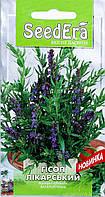 Лекарственное растение Гисоп Seedera