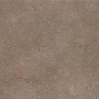 Керамогранит Дайсен коричневый обрезной 600х600 SG610500R Kerama Marazzi
