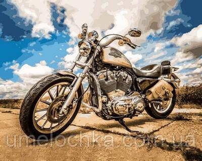 Раскраска по номерам Турбо Harley Davidson (VP722) 40 х 50 см