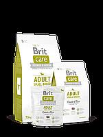 Brit Care Adult Small Breed Lamb & Rice Корм для взрослых собак мелких пород с ягненком и рисом 3 кг