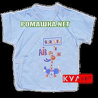 Распашонка для новорожденного р. 56 короткий рукав ткань КУЛИР 100% тонкий хлопок ТМ Алекс 3171 Голубой А