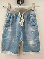 Детские трикотажные шорты (серый)