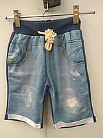 Детские трикотажные шорты (синий)